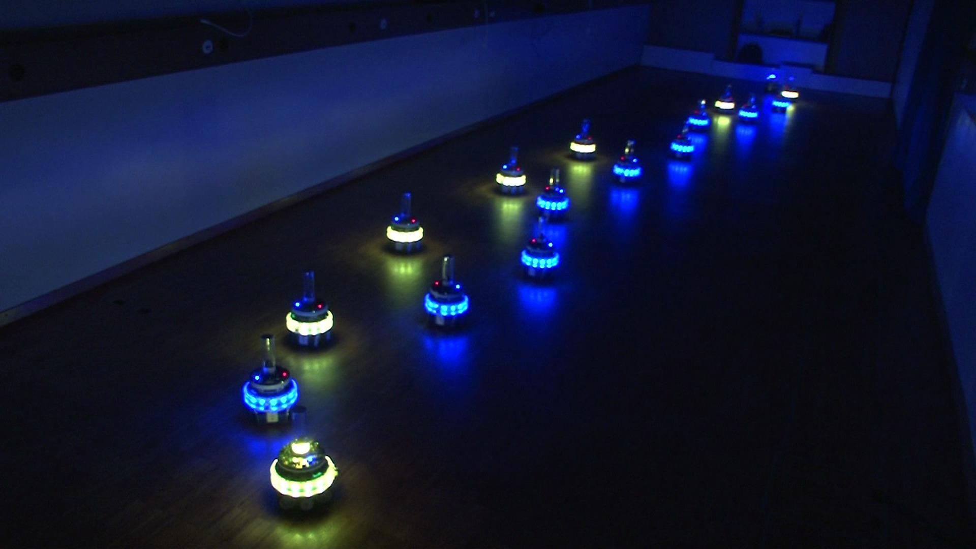 Swarm Robotics Idsia